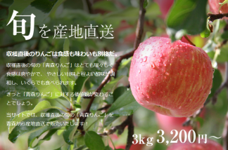 りんごの惑星ネットショップ 青森りんごの販売