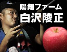 りんごの惑星ネットショップ 陽翔ファーム
