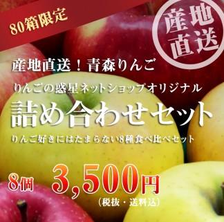青森りんごの多種詰め合わせセット