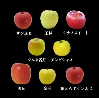 りんごの惑星多種詰め合わせ8種
