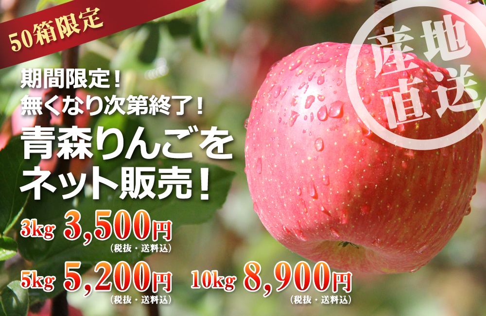 限定!産地直送!キャストの青森りんごをネット通販できる!